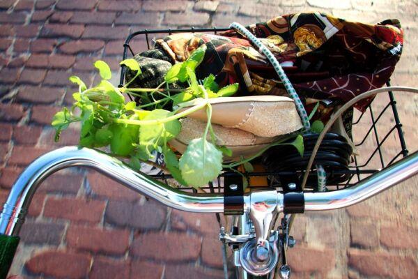 Tertúlia 'comércio bike-friendly'